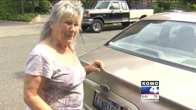Teens Fail to Steal Elderly Woman's Car Because They Can't Drive Stick