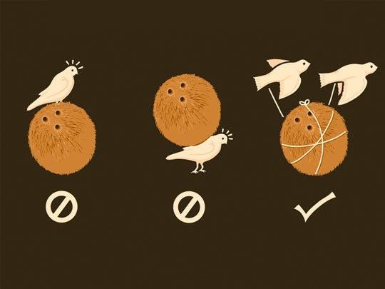 Inane debate: Coconuts