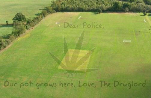 Swiss Police Uncover Hidden Marijuana Farm Using Google Earth