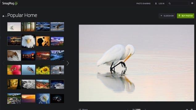 Five Best Image Hosting Web Sites