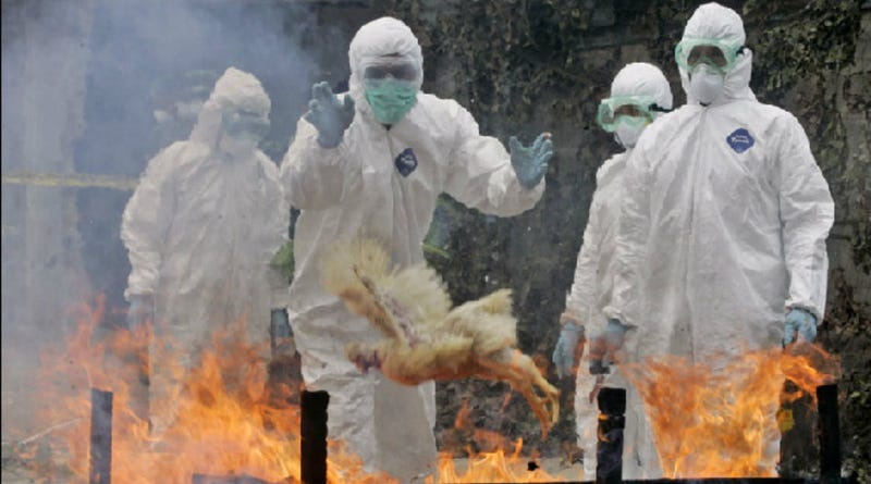 The Deadliest Potential Pandemics Facing The World Right Now