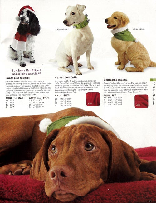 Fetchdog, Drs Fosters & Smith: Howliday Humiliation For Dogs & Cats