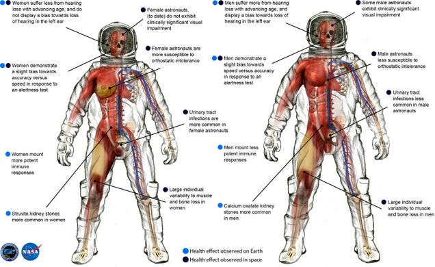 The fascinating differences between men and women astronauts in space