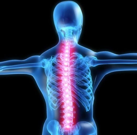 This Is What Your Spine Looks Like When The Placebo Effect Kicks In