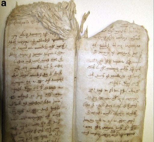 Scientists find an entire ecosystem living off the pages of an 800-year-old manuscript