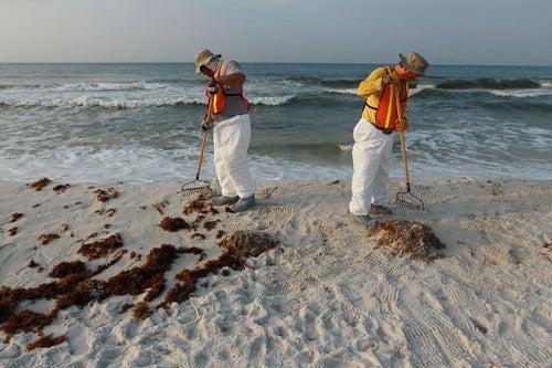 Oil Spill Tab Hits $8 Billion for BP