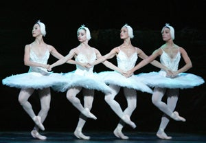 Dangerous Beauty: Are Tutus Too Much?