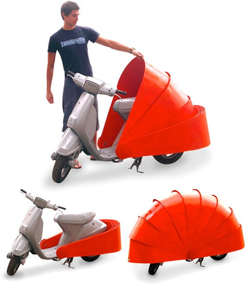 The Scooter Armadillo, Also Known as Urban Roadkill