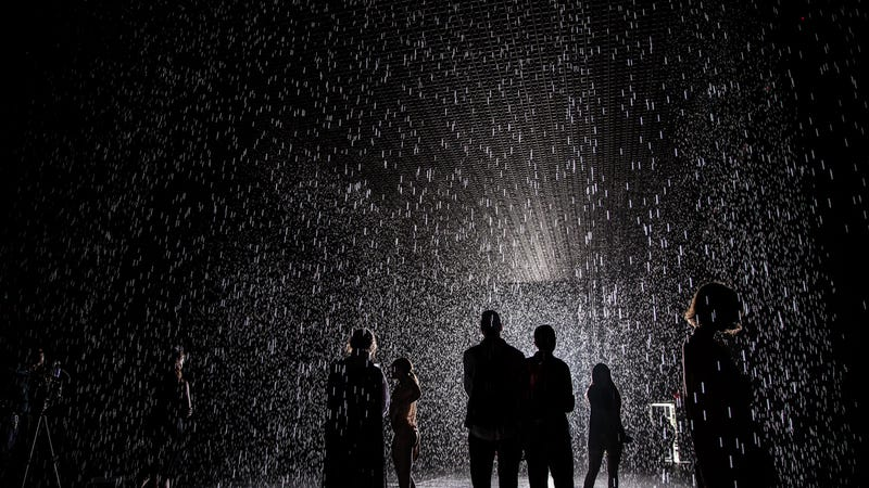Inside the Rain Room: Walking Through a Downpour Without Getting Wet