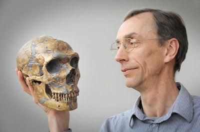 New DNA evidence could explain what happened to the Neanderthals