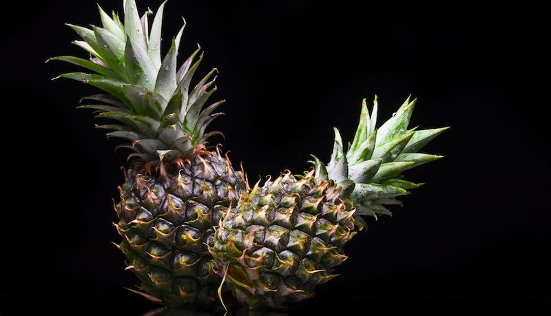 "Navy Football Players Rented Secret House Called ""Black Pineapple"""