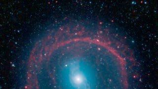 A Halo Of Young Stars Rings This Galaxy In Bright Infrared Light