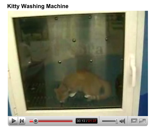 Automatic Pussy Washing Machine (Totally Safe For Work)