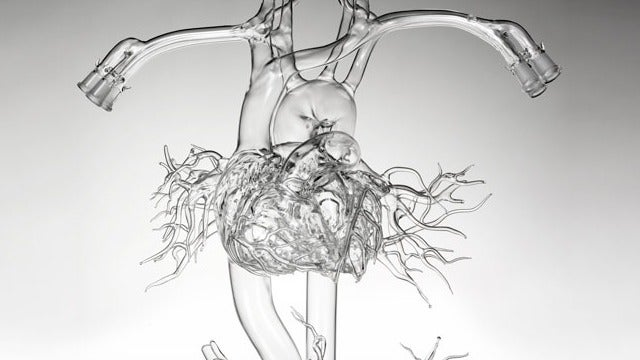 This Crazy-Looking Spaghetti Monster is a Heart Made Out of Glass