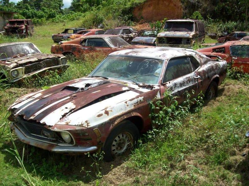 A Real Mustang Ranch