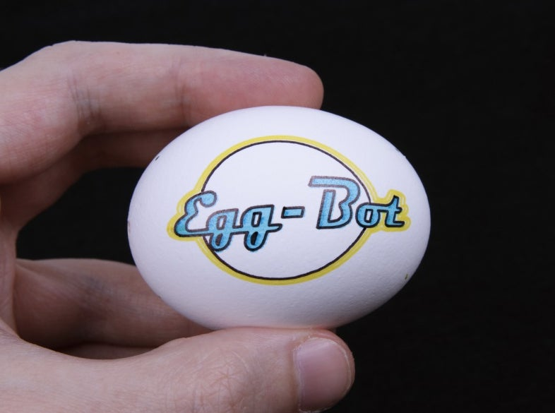 Let the Egg-Bot Draw Your Egg a Plaid Jacket