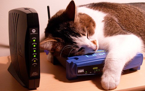 What Kind of Wireless Router Are You Using?