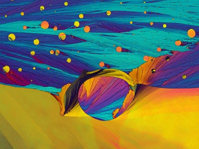 Photomicrography Captures the Beauty of the Small