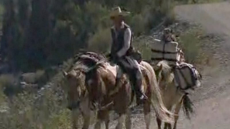 Awesome Woman Traverses 18,000 Miles of American Wilderness With Little More Than Her Horses, a Dog and a Sombrero