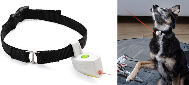 A Collar Laser Pointer Is the Dangling Carrot Your Pet Will Never Catch