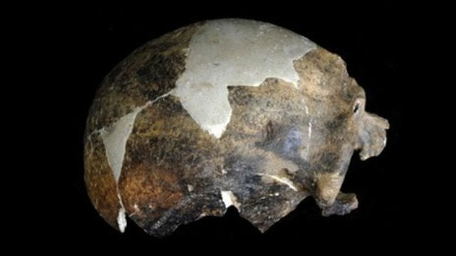 Does this 150,000 year old skull show the first case of human-on-human violence?