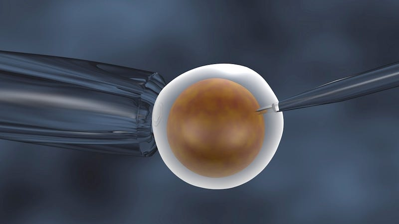 Are Genetic Ménages à Trois the Future of In Vitro Fertilization?