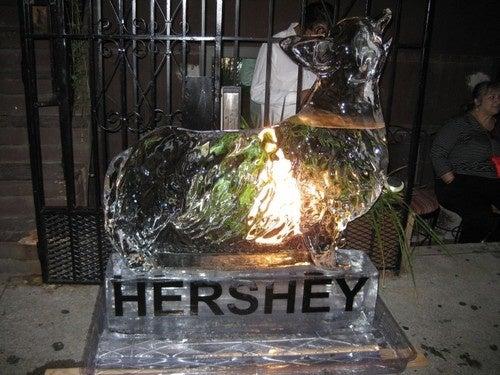 Cornelia Street Crusader Speaks, Has Ice Statue Made of His Dog