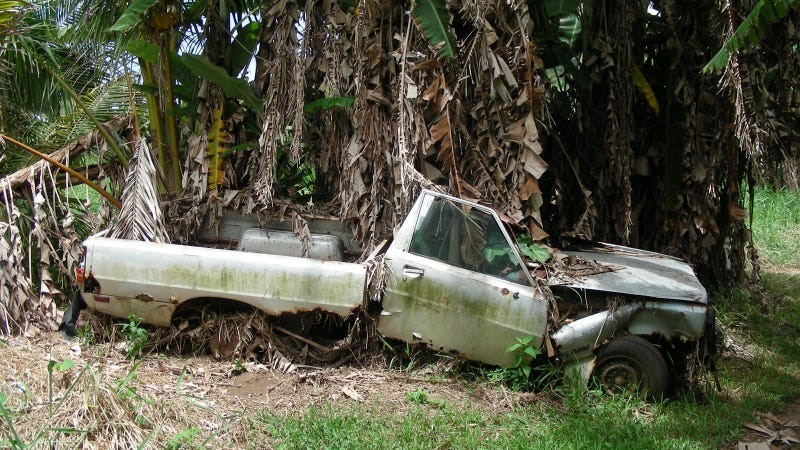 Tropical Flooding Leaves Behind A Rotten Dodge Ram