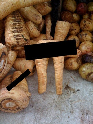 Porno For Parsnips