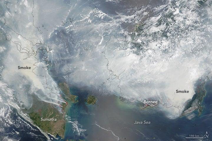 A Single Bad Fire Season Sent Smoke Halfway Around the Planet