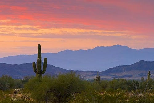 Arizona: The Southwest's Pariah State