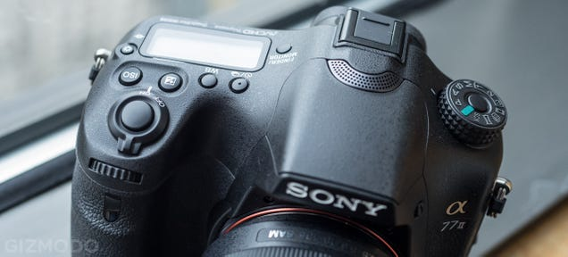 Sony A77 Mark II: The Mid-Range DSLR Gets a Turbo-Charged Upgrade