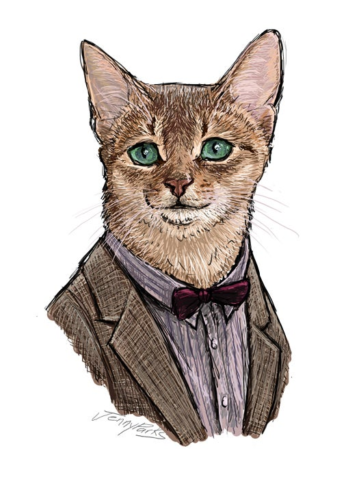 """Doctor Mew"" reimagines the eleven Doctors as canny and capricious cats"