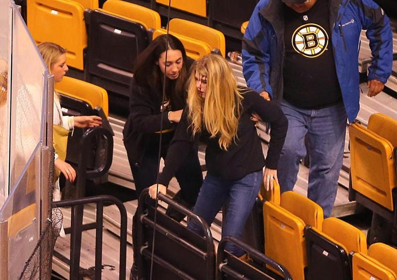 Netting Falls At Bruins Game, Injuring Two