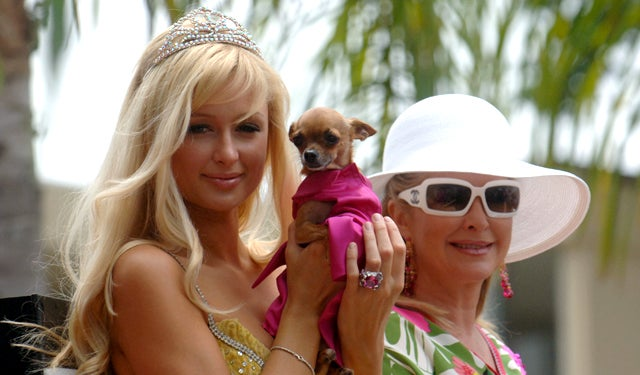 Is Paris Hilton to Blame for Iran's Proposed Dog Ban?