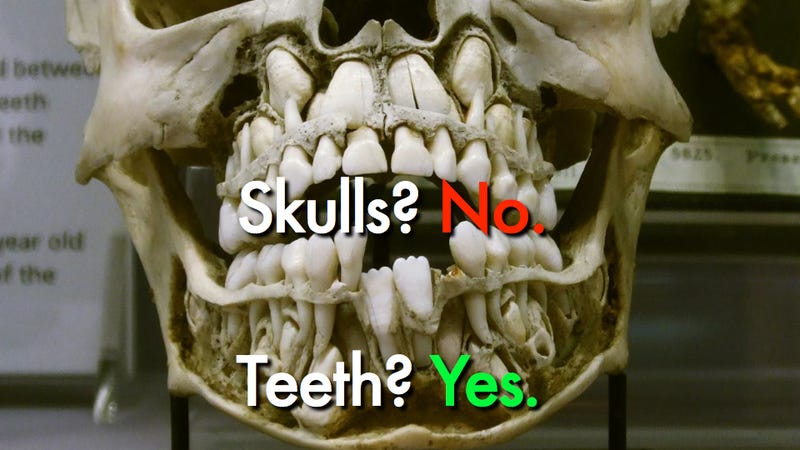 Good to know: Etsy retailers can sell human teeth, but not bones