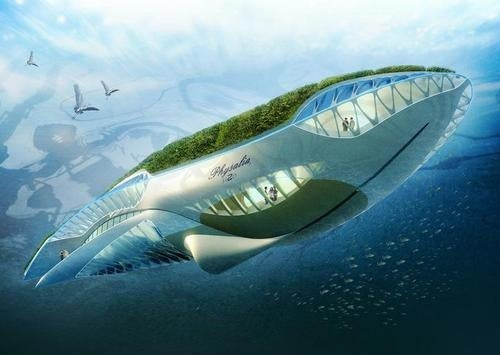 In My Uberutopia I Ride a Floating Whale Garden