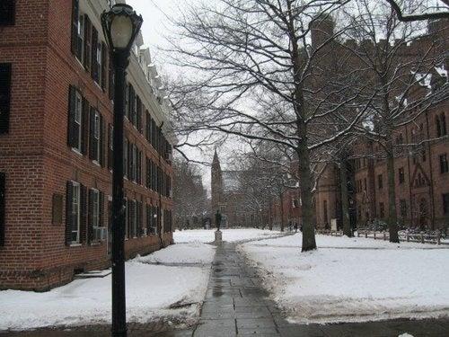Yale Freezes Over