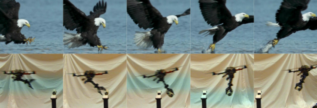 Quadcopters now have eagle-like talons to snatch prey — er, objects