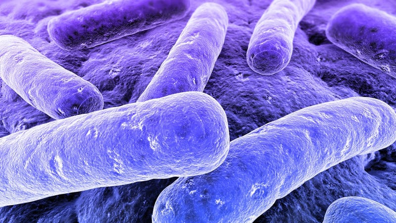 Millennia-Old Strains of Bacteria Can Resist Drugs They've Never Met