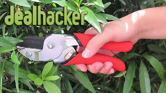 Deals: Craftsman Pruner, Dragon Dictation, DSLR Bag