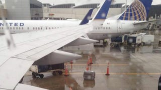 United Airlines Allegedly Leaves Caged Dog Unattended In The Cold Rain