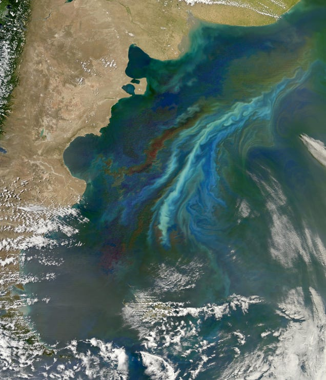 Tiny Ocean Microbes are Brightening Up the Sky