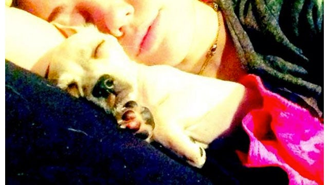 Miley Cyrus Continues the Cuddle Fest with her Adorable New Rescue Puppy