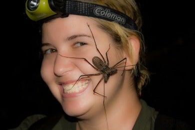 How Venomous Creatures Can Kill You--Or One Day Save Your Life