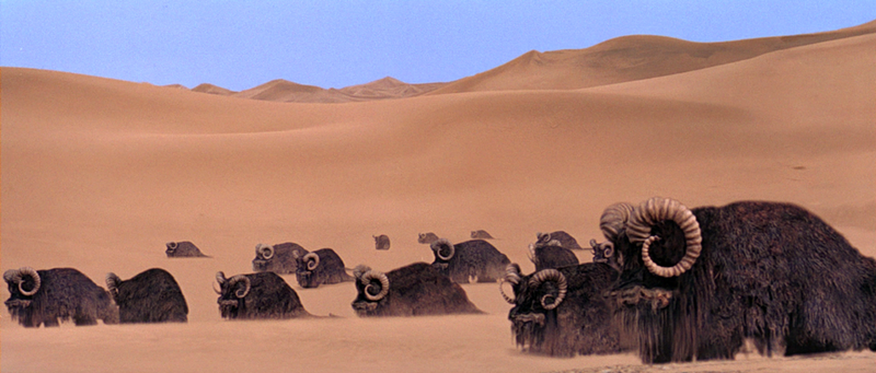 For Fun and Science: The Biology, Ecology and Geology of Tatooine