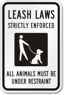 Leashes are not a fucking suggestion
