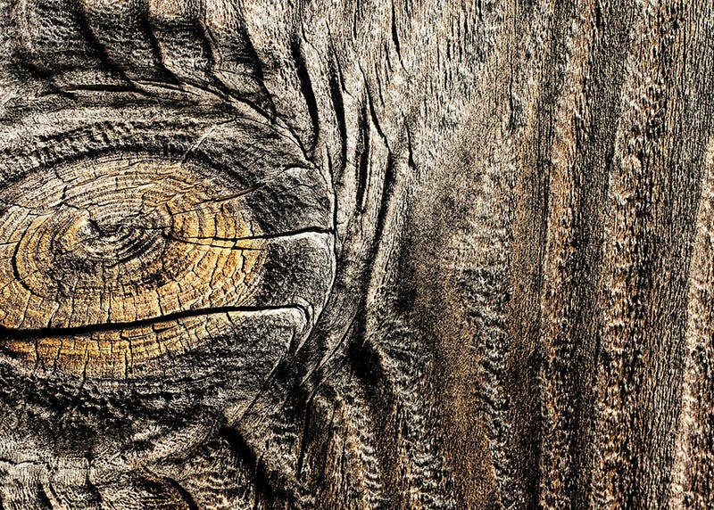 44 Gnarly Photos of Wood