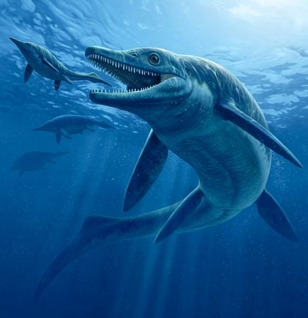 This massive Triassic Era sea monster picked on prey its own size