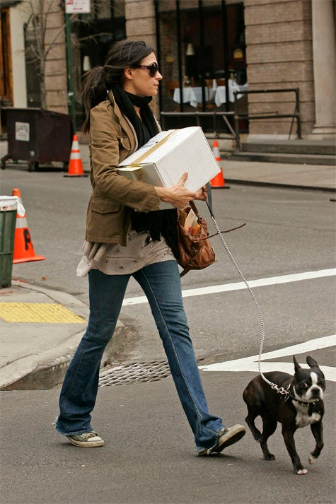 Famke Janssen Matches Scarf & Package To Dog